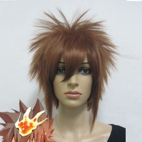 Hitman Reborn Sawada Tsunayoshi Cosplay Wig