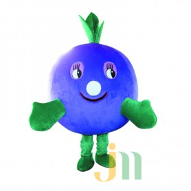 Blueberries Cartoon Doll Cartoon Walking Doll Clothing Hedging Blueberries Mascot Costume