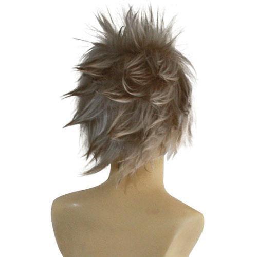 Hack Haseo Halloween Cosplay Wig