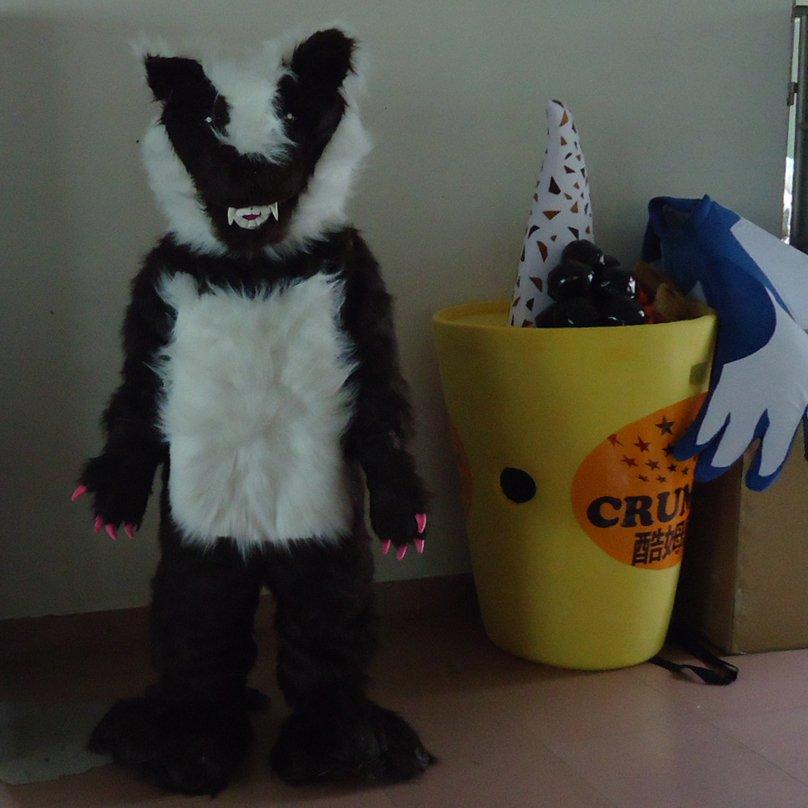 Custom Mascot Cartoon Dolls Clothing Walking Cartoon Dolls Wolf Eva Super Soft Fleece Clothing Mascot Costume