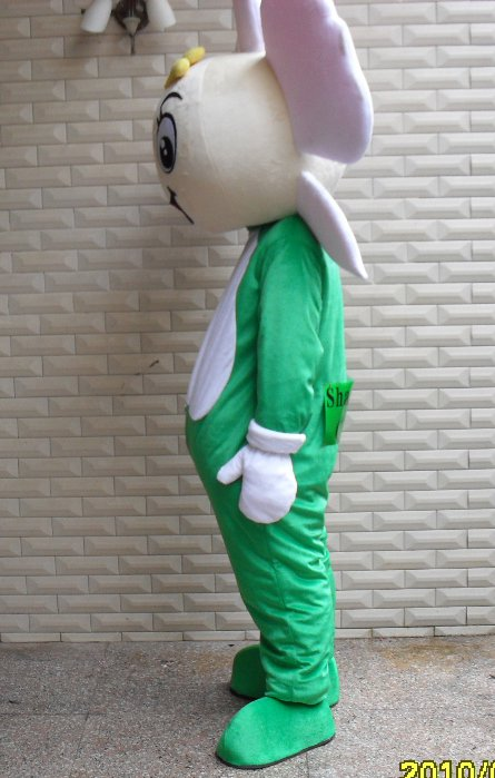 Plant Flowers Adult Walking Cartoon Doll Clothing Section Japan Opening Ceremony Performance Costumes Orchid Mascot Costume