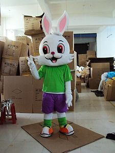 Zodiac Animal Cartoon Walking Doll Clothing Apparel Show Red Bunny Rabbit Starling Clever Little Rabbit Mascot Costume