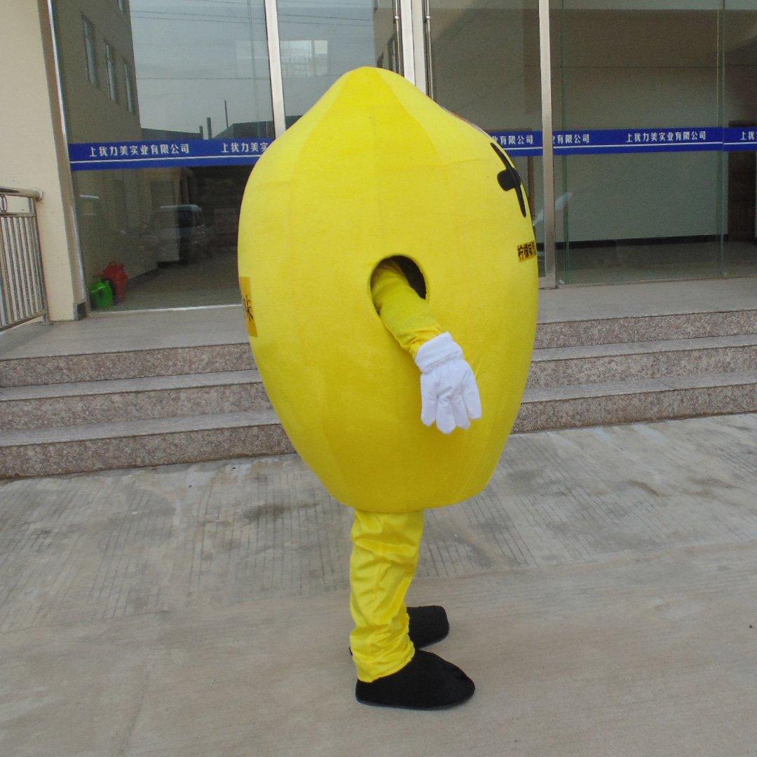 Lemon Cartoon Clothing Cartoon Doll Clothing Cartoon Mascot Costumes Dress