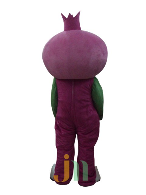Pomegranate Cute Cartoon Doll Cartoon Walking Doll Clothing Sets Lovely Pomegranate Mascot Costume