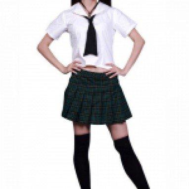 Perfect School Girl Halloween Cosplay Costume
