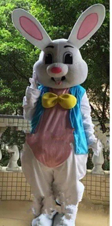 Cartoon Costumes Walking Cartoon Dolls Cartoon Doll Dress Performance Props Props Rabbit Marry Mascot Costume