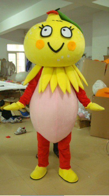 Heilongjiang and Jilin Fruit Orange Clothing Doll Clothing Cartoon Dolls Clothes Mascot Costume