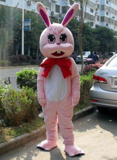 Cartoon Doll Clothing Cartoon Rabbit Walking Doll Clothing Cartoon Show Clothing Zodiac Rabbit Cartoon Doll Clothing Mascot Costume