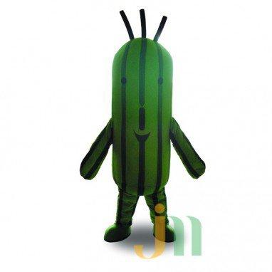 Final Fantasy Mascot Cartoon Cactus Even Walking Doll Cartoon Clothing Sets Head Cactus Mascot Costume