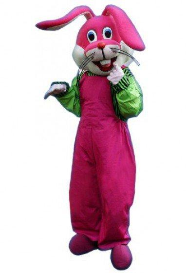 Doll Clothing Cartoon Costumes Cartoon Doll Clothing Cartoon Rabbit Doll Clothing Etiquette Mascot Costume