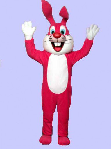 Taiyuan Cartoon Costume Cartoon Figures Clothing Cartoon Costumes Plush Rabbit Doll Clothing Matchmaker Mascot Costume