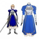 Supply Fate Stay Night Cosplay Costume  - Halloween