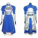 Fate Stay Night Cosplay Costume  - Halloween
