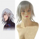 Kingdom Hearts Riku Halloween Cosplay Wig