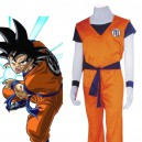 Supply Dragon Ball Cosplay Kame Hame Goku Cosplay Costume