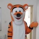 Supply Tigger Tigger Cartoon Clothing Cartoon Clothing Mascot Costume