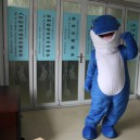 Supply Dolphin Cartoon Walking Doll Clothing Dolphin Marine Organisms Adult Walking Doll Clothing Props Mascot Costume