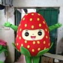 Supply Strawberry Fruit Cartoon Clothing Walking Cartoon Dolls Cartoon Doll Doll Costumes Performing Strawberries Mascot Costume