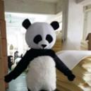 Supply Cartoon Doll Clothing Cartoon Panda Panda Panda Cartoon Costumes Cartoon Clothing Cartoon Ornaments Mascot Costume