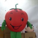 Supply Cartoon Doll Clothing Water Fruit Vegetable Plant Performance Props Cartoon Dolls Clothing Apple Mascot Costume
