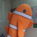 Supply Cartoon Costumes Cartoon Dolphins Cartoon Clothing Cartoon Costumes Etiquette Supplies Goldfish Cartoon Costumes Mascot Costume
