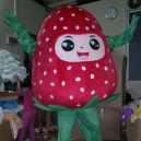 Supply Plant Strawberries Cartoon Doll Clothing Cartoon Clothing Performance Costumes Mascot Costume