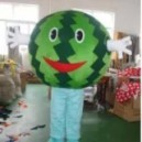 Cartoon Costumes Walking Cartoon Dolls Cartoon Doll Dress Performance Props Watermelon Fruit Mascot Costume
