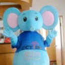Supply Cartoon Costumes Walking Cartoon Dolls Cartoon Doll Dress Performance Props Elephant Mascot Costume