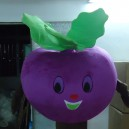 Supply Professional Cartoon Doll Clothing Summer Fruits and Vegetables Purple Radish Mascot Cartoon Dolls Clothing Mascot Costume