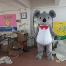Supply Material Koala Kangaroo Cartoon Doll Clothing Cartoon Clothing Cartoon Fashion Show Props Walking Dolls Mascot Costume