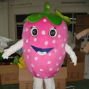 Supply Fruit Series Strawberry Cartoon Doll Clothing Stage Performance Clothing Dance Clothing Strawberries Ad Mascot Costume
