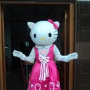 Supply Series Costume Adult Cat Doll Dress Performance Props Dress Walking Cartoon Doll Clothing Mascot Costume
