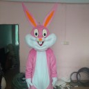 Supply Color Bugs Bunny Cartoon Mascot Costume Cartoon Costumes Wedding Performances Show Cartoon Dolls Clothing