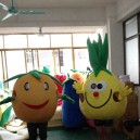 Supply Cartoon Doll Clothing Cartoon Costumes Plum Pineapple Pear Walking Doll Clothing Cartoon Walking Clothes Mascot Costume