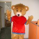 Supply Bear Cartoon Costumes Cartoon Bear Walking Doll Clothing Doll Clothing Bulk Mascot Costume