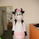 Supply Cartoon Doll Clothing Zealand Cows Cow Advertising Festival Film Props Clothing Apparel Mascot Costume