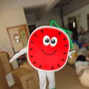 Supply Fruit Watermelon Walking Doll Clothing Props Plant Watermelon Walking Doll Clothing Doll Clothing Mascot Costume