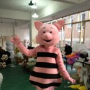 Supply Piglet Piggy Pig Cartoon Clothing Cartoon Show Clothing Walking Doll Clothing Mascot Costume