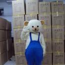 Supply Small Polar Bear Cartoon Dolls Bear The Bulk of The Brown Bear Cartoon Walking Doll Clothing Mascot Costume