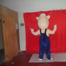 Shanghai Cartoon Doll Three Little Pigs Cartoon Costumes Stage Costumes Dress Costumes Mascot Costume