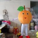 Cartoon Doll Clothing Mango Fruit Lemon Clothing Apparel Clothing Cartoon Clothing Props Plant Mascot Costume