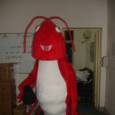 Supply Crayfish Cartoon Doll Clothing Lobsters Crabs Walking Doll Clothing Doll Clothing Apparel Mascot Costume