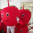 Supply Fruit Cartoon Red Apple Doll Clothes Doll Clothes Performing Promotional Activities Walking People Dress Celebration Mascot Costume