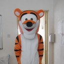 Supply Tigger Cartoon Tiger Walking Doll Clothing Doll Clothing Cartoon Clothing Cartoon Doll Clothing Props Mascot Costume