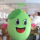 Supply Fruits and Vegetables Cantaloupe Melon Walking Cartoon Dolls Cartoon Clothing Costumes To Promote Its Performances Costumes Mascot Costume