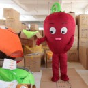Sportswear Clothing Walking Cartoon Dolls Cartoon Clothing Cartoon Clothing Costumes Vegetable Radish Mascot Costume