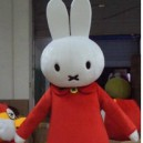 Supply Creative DIY Doll Clothing Cute Bunny Rabbit Cartoon Dolls Performances Serving Obediently Peter Rabbit Mashimaro Mascot Costume