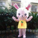 Supply Adult Cartoon Doll Clothing People Wear Costumes and Stage Performances Small Rabbit Doll Animal Doll Mascot Costume
