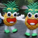 Supply Adult Cartoon Doll Costume Dress To Wear People Walking Cartoon Props Costumes Clothing Pineapple Fruit Pineapple Mascot Costume