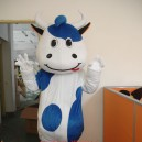 Supply Mengniu Dairy Cattle Adult Cartoon Costumes Walking Performances Doll Clothing Props Kaka Cattle Mascot Costume